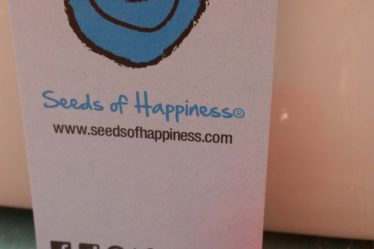 Q&A with Mark Borella The Seeds of Happiness Guy