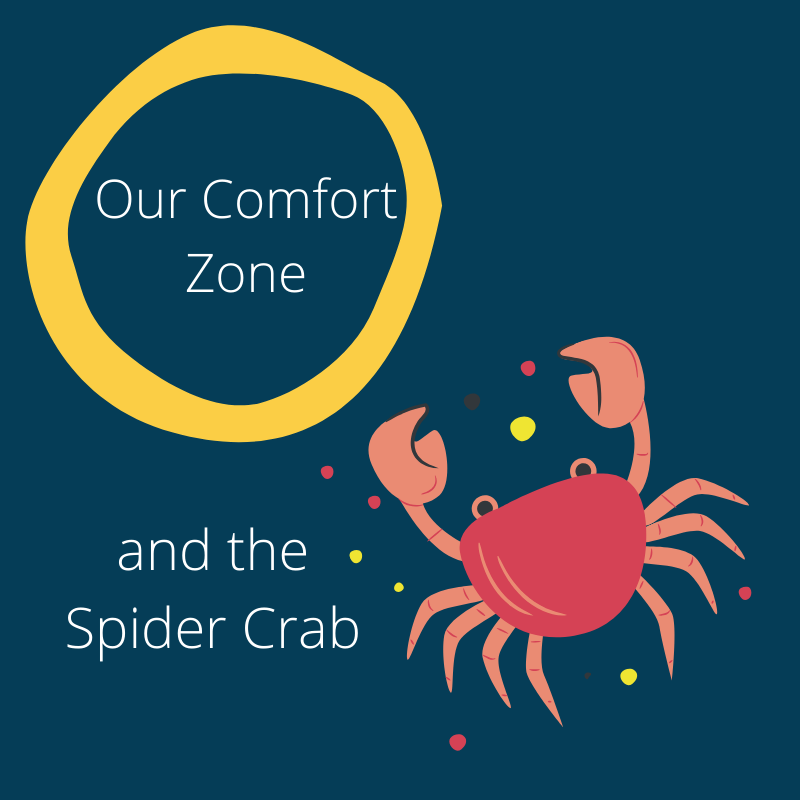 Our comfort zone and the spider crab image