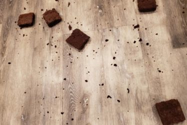 How to Keep From Feeling Scatter like these brownies are