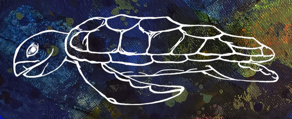The Novel Turtle Logo Picture