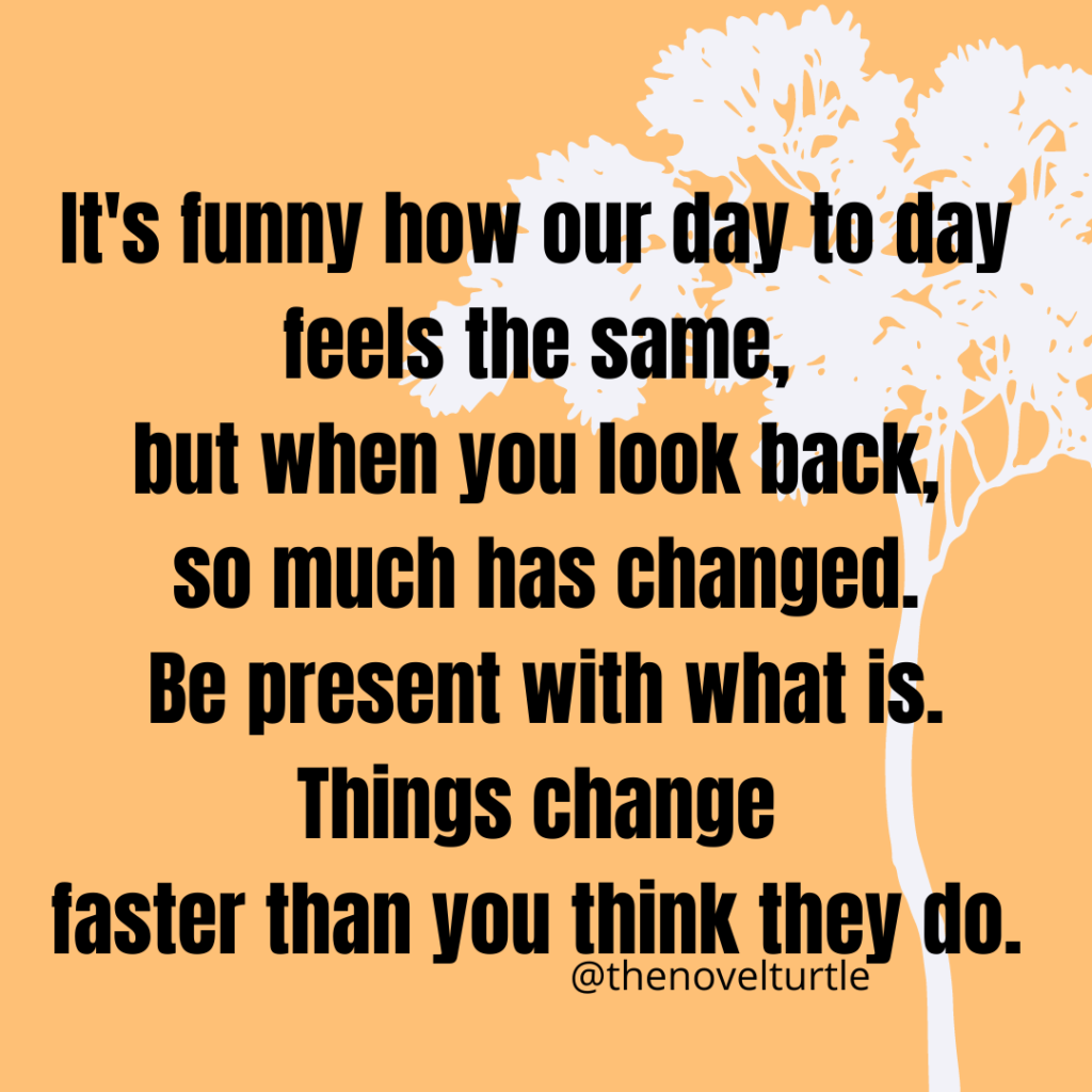 Quote: It's funny how our day to day feels the same, but when you look back, so much has changed.