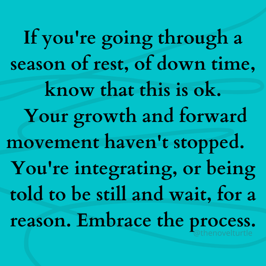 Quote by @thenovelturtle - If you're going through a season of rest, of down time, know that this is ok.